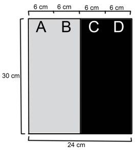 ilustrasi kaset pada pengujian safelight